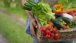 防疫採買攻略,營養師推薦:這3種耐放蔬菜抗壓力又抗發炎