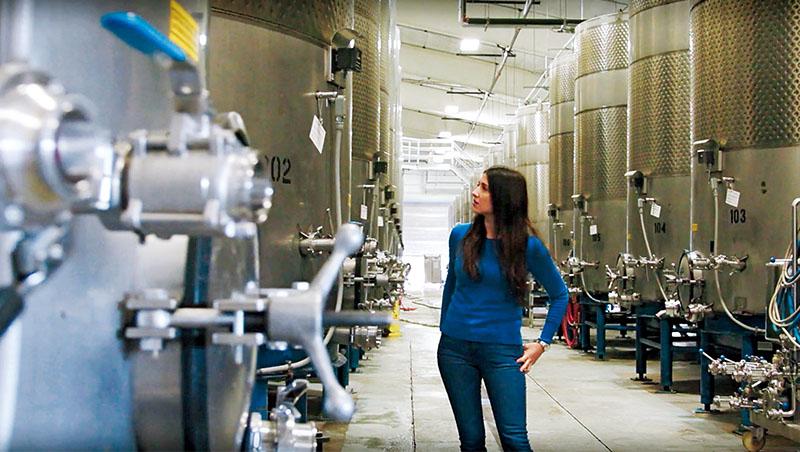 加州新創Tastry創辦人兼執行長阿克塞爾森,用AI把葡萄酒口味數據化,不只客觀分析酒的成分,還能知曉顧客喜好