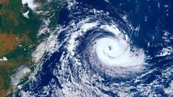 璨樹颱風未登陸》不是rain,豪雨和雷陣雨,英文該怎麼說?
