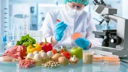 輸入手邊食材,就幫你「算」出一套食譜!AI能預測口味、還能研發配方