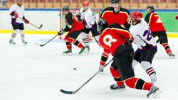 師法冰球運動團隊合作精神,成就收益大師地位