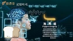 專注力晶片助力,記憶吐司打造分心時代的情緒穩定