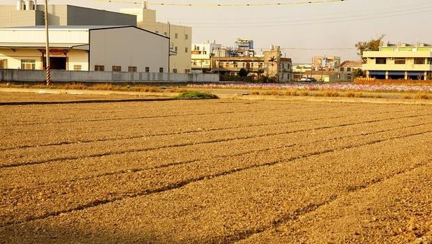 20年最大乾旱!2萬6千個足球場大小...嘉南平原「1.9萬公頃」確定休耕