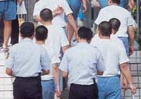 博達董事長葉素菲現在狀況:羈押一九八天