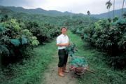 ■從經理變農夫,王乾坤注重品質與品牌,替台灣農業找出新出路。