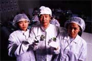郭明棟(中)積極研發BGA技術,爭取成為世界大廠。