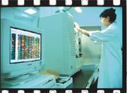 中研院的「水稻基因組計畫」可能將因經費不足而影響進度。