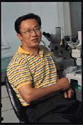 吳信志成功地將「豬乳鐵蛋白」的基因轉殖到母豬身上。