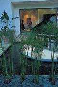 渣打銀行內九間各約三坪大的會談室旁就有水池與綠竹(上),開放式的空間規畫,有下午茶區、書報區、視聽區(右),理財諮詢空間生意盎然。舒適的沙發全都是專門為這間分行訂製的。