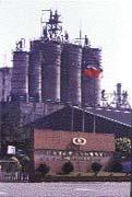 在吳東進、吳東亮兄弟失和的同時,新纖營運也出現衰退。