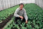 2003年3月,劉力學利用廚餘做成的堆肥大量種出各種蔬菜。