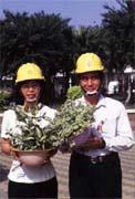 台電利用廢棄安全帽種盆栽,美化廠區。