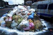 大量垃圾所產生的戴奧辛問題不容忽視。