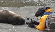 去南極的最大收穫『我不知道!』--末日旅程第二站