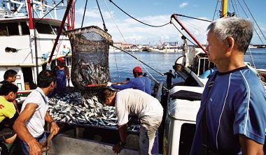 環島吃魚鮮