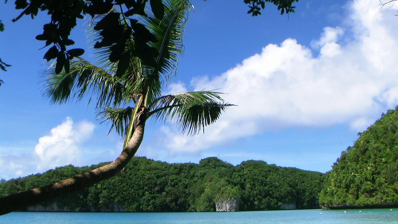 海島因為背景簡單,很容易構圖