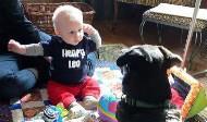 要讓寶寶更健康 養狗比貓好!