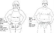 為什麼明明不胖,小腹卻這麼大?