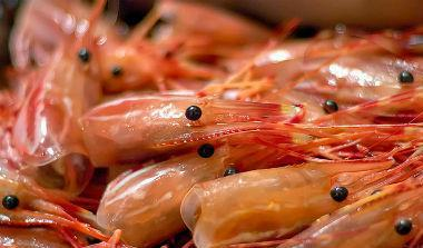 酷刑?下鍋現燙的活蝦會痛嗎