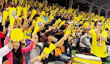 中華職棒票房倍增,出現前所未有的盛況。