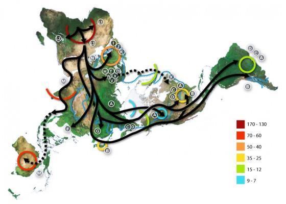 科學發現:台灣是紐西蘭人的祖先?