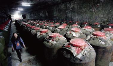 金門長期超抽地下水,已導致水井鹽化,金門高粱酒水質首當其衝。