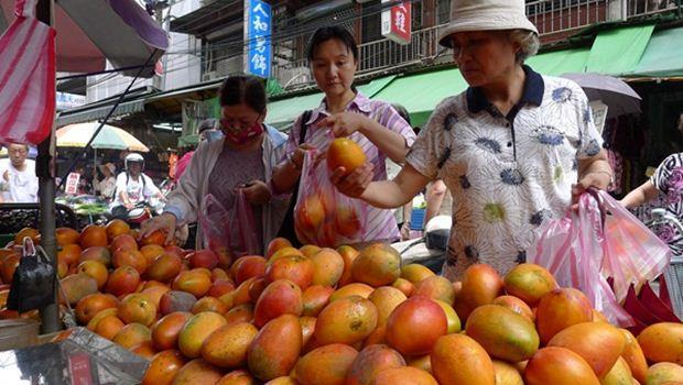夏天吃芒果 小心違法生長素也吃下肚