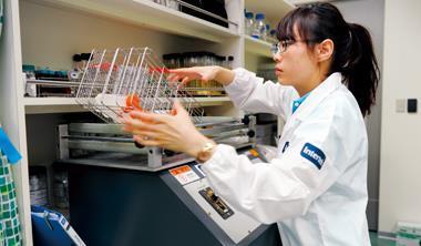 各大實驗室為了問題澱粉加班、趕工,但似乎仍無法為大眾食用問題掛上安全保證。
