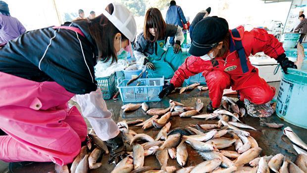 許多民眾喜歡到魚市場買新鮮魚貨,但因政府把關不嚴,遭日本海域污染的水產可能已混入其中。
