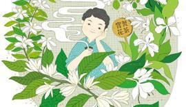 泡茶也有SOP?!高手泡茶SOP首度公開