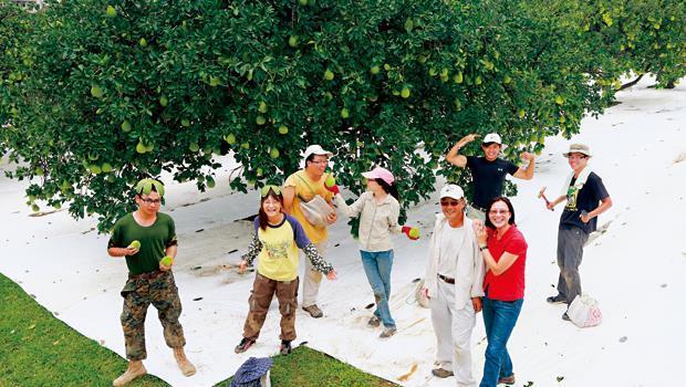 鎮北文旦農鄭正宏(前排右2)投入近百萬,讓果園1甲地鋪滿杜邦防水透氣布,透過水分控制與陽光反射提升文旦品質。