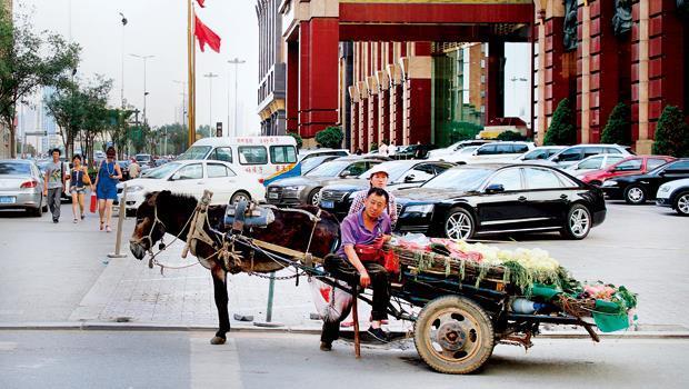 瀋陽老牌高檔飯店門口,豪華名車環伺中,卻停了一輛驢車,仿佛是在為城鎮化之後已遠去的農村氣息,做最後一次見證。