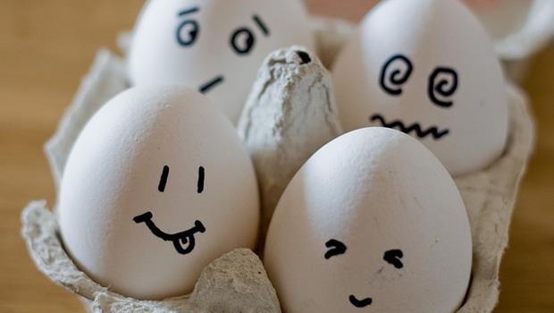 想吃好蛋必看!友善雞蛋的生產指南