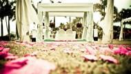 臉書營運長悼亡夫:願意再跟他走一次紅毯》結婚除了 get married,你還可以這樣說