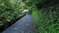 週末小旅行》虎山生態步道