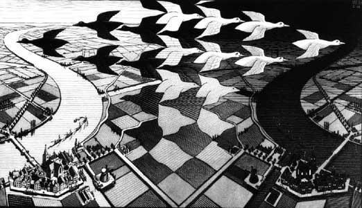 是藝術,還是數學?錯覺藝術大師艾雪故宮展