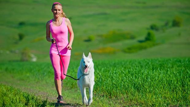 遛狗也能瘦?持續燃燒熱量的秘密:三步驟增加新陳代謝