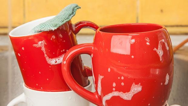 公用菜瓜布比馬桶髒20萬倍!你還拿來洗杯子?