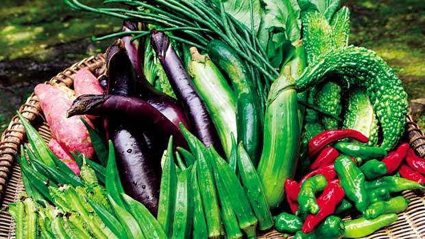 五十種食材嘗到季節風味