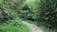 週末小旅行》平溪步道