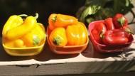 餿水油風暴》保健食品OUT!排毒效果最好的10種蔬菜