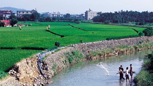 台知園區特定區計畫,將把種出冠軍米的稻田變建地,台灣可能永遠失去一片美麗又珍貴的優良農地。