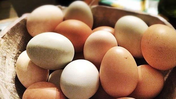 3步驟就學會》超實用的「雞蛋保鮮術」