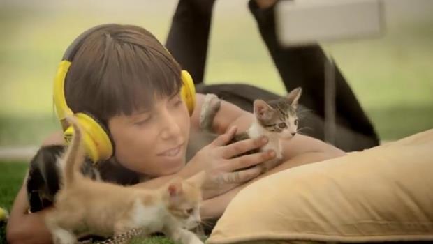 超萌療癒貓咪影片!看完還能學會安撫緊張情緒的3種英文說法