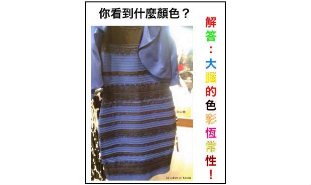 你看到什麼顏色的裙子?腦科學家解開大腦的祕密