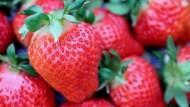 便秘、貧血...吃草莓就對了!不可不知4大好處