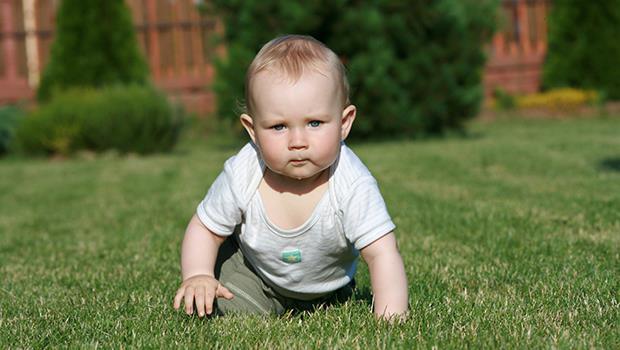 寶寶6個月大就「放生」,讓他自由爬?以色列教育:小孩不冒險怎麼長大
