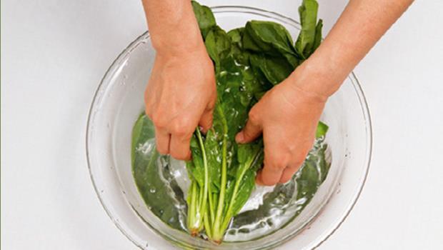 有圖為證》軟趴的青菜用50℃水清洗,立刻像現摘的一樣新鮮美味!