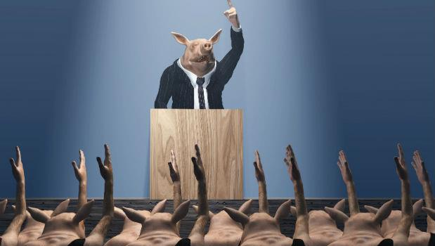 畢業頭3年,每天和誰一起工作很重要!跟「豬」一樣的隊友相處久了,你也會變豬