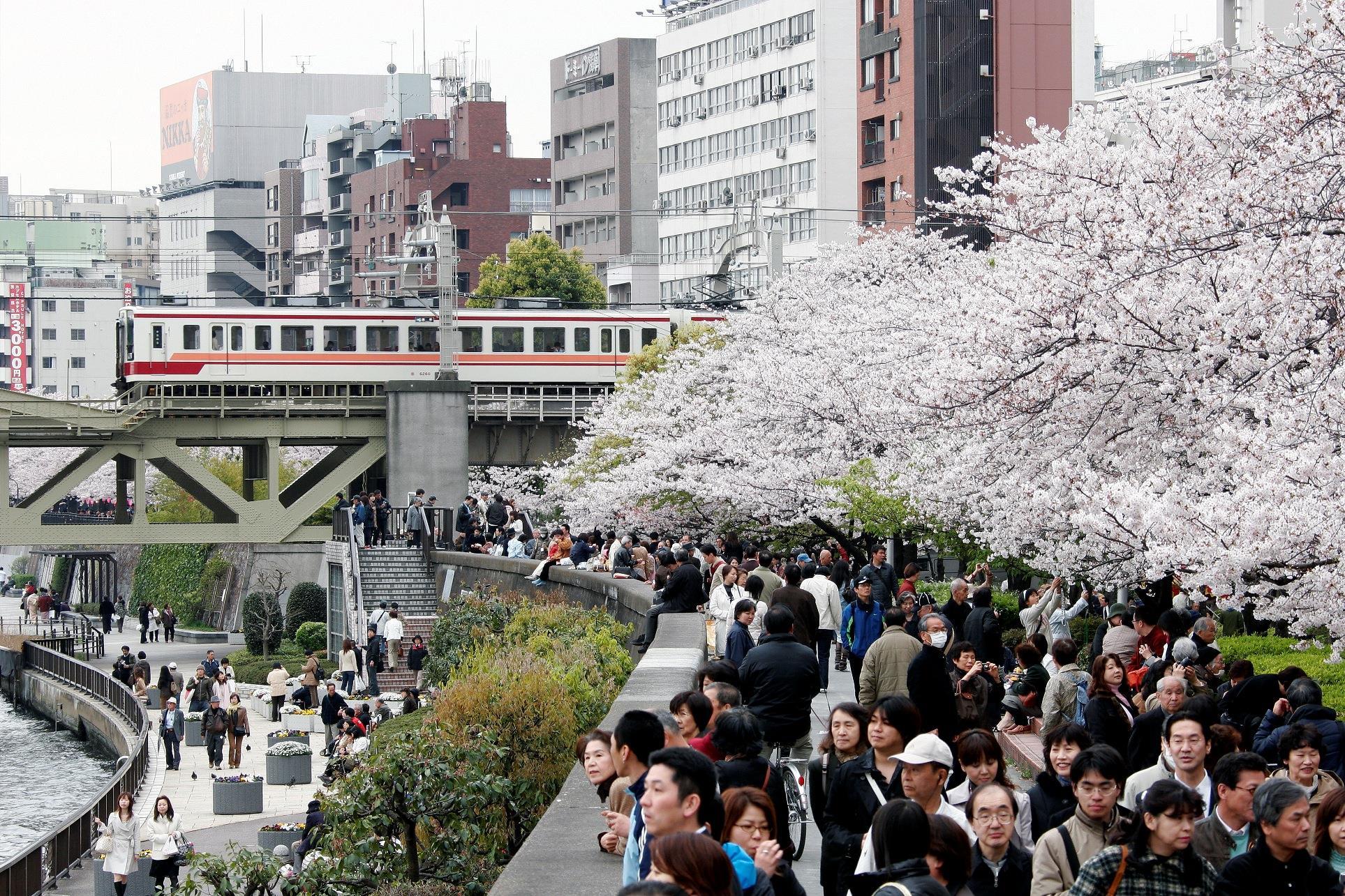 數字會說話!東京房市為何看漲